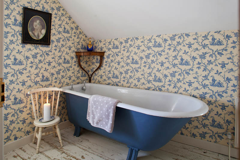 my style - old fashioned painted bathtub