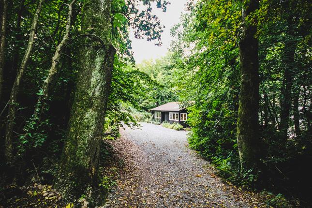 Ep3---Egon-Walesch---Cabin-in-the-Woods-(13)