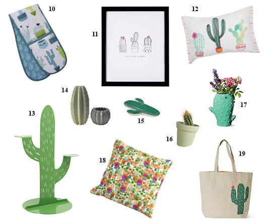 cactus interiors