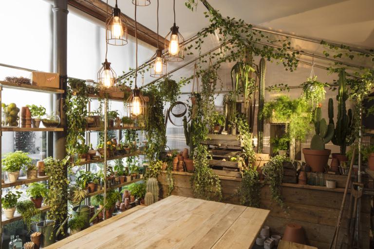 greenery house airbnb pantone