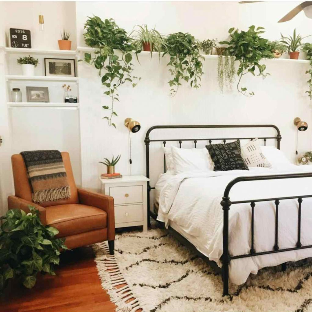 3 'bedroom Plants' That Will Help You Sleep Better At