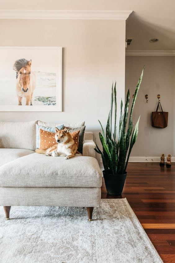 7 Decor Mistakes To Avoid In A Small Home: 5 Small Space Mistakes You're Probably Making